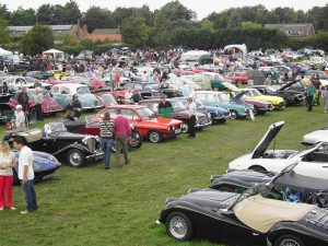 Vehicles on show